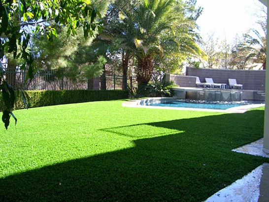 Artificial Grass Photos: Artificial Grass Amesti, California Garden Ideas, Backyard Landscape Ideas