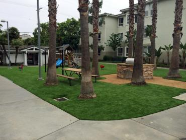 Artificial Grass Photos: Artificial Grass Carpet Tuttle, California Garden Ideas, Commercial Landscape