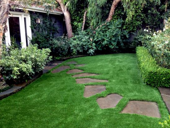 Artificial Grass Photos: Artificial Grass Carpet Tuttle, California Design Ideas, Backyards