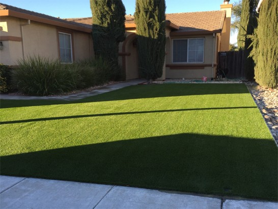 Artificial Grass Photos: Artificial Grass Castroville, California Landscape Ideas, Landscaping Ideas For Front Yard