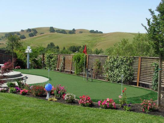 Artificial Grass Photos: Artificial Grass Denair, California Putting Green Grass, Backyard Designs