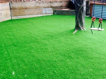 Artificial Grass Photos: Artificial Grass Installation Alum Rock, California Lawns, Backyard
