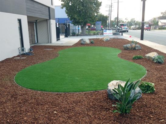 Artificial Grass Photos: Artificial Grass Lindsay, California Design Ideas, Commercial Landscape
