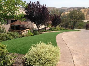 Artificial Grass Photos: Artificial Grass Shackelford, California Design Ideas, Landscaping Ideas For Front Yard