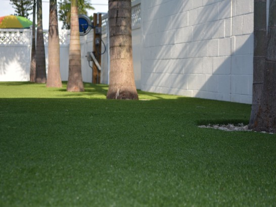 Artificial Grass Photos: Artificial Grass Taft Mosswood, California Landscape Photos, Commercial Landscape