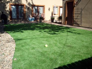 Artificial Grass Photos: Artificial Lawn Cayucos, California Lawns, Backyard Garden Ideas