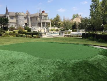 Artificial Grass Photos: Artificial Lawn Hardwick, California Landscape Ideas, Front Yard Design
