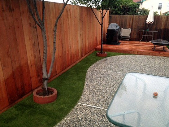 Artificial Grass Photos: Artificial Turf Cost Greenacres, California Hotel For Dogs, Backyard Landscaping Ideas