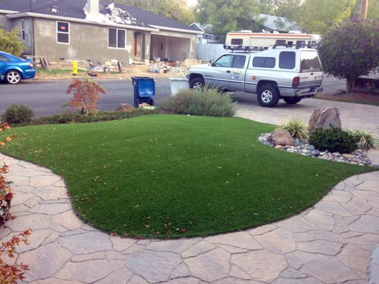 Artificial Grass Photos: Artificial Turf Cost Minkler, California Landscaping, Front Yard Landscape Ideas