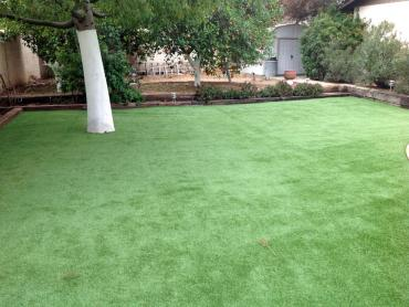Artificial Grass Photos: Artificial Turf Cost Mount Hermon, California Garden Ideas, Backyard