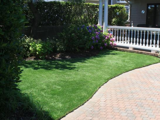 Artificial Grass Photos: Artificial Turf Cost Vineyard, California Cat Playground, Front Yard Landscaping
