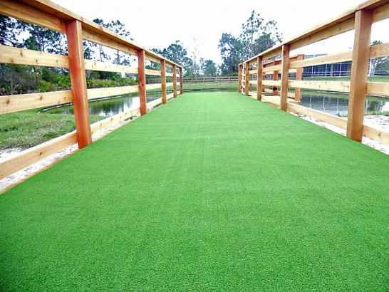 Artificial Grass Photos: Artificial Turf Cost Woodside, California Dog Run, Commercial Landscape