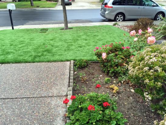 Artificial Grass Photos: Artificial Turf Installation Newman, California Dogs, Front Yard Landscaping Ideas