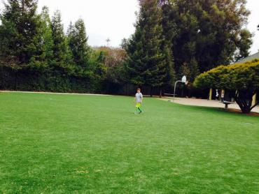 Artificial Grass Photos: Artificial Turf Lockeford, California Home And Garden, Recreational Areas