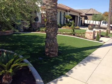 Artificial Grass Photos: Artificial Turf Springville, California Landscape Design, Front Yard Ideas