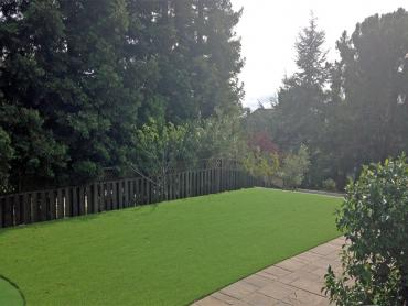 Artificial Grass Photos: Artificial Turf Union City, California Lawns, Backyard Landscape Ideas