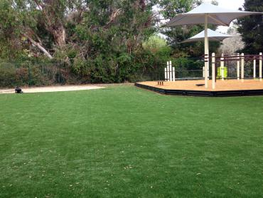 Artificial Grass Photos: Artificial Turf West Point, California Playground Turf
