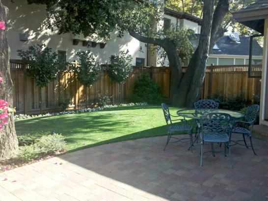 Artificial Grass Photos: Best Artificial Grass Big Creek, California, Backyard Makeover