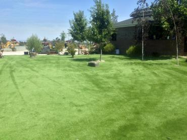 Best Artificial Grass Delhi, California Lawn And Garden, Parks artificial grass