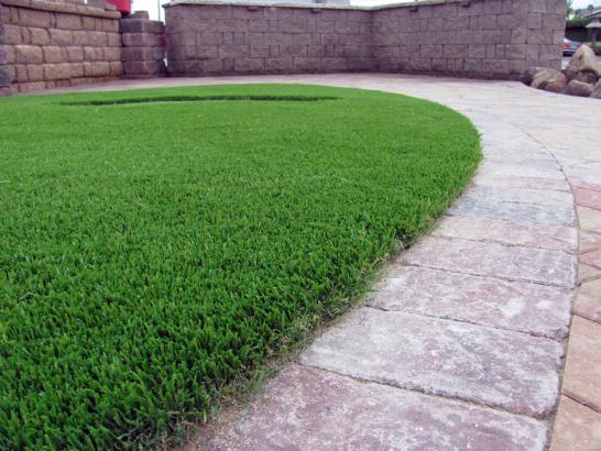 Artificial Grass Photos: Fake Grass Carpet Elk Grove, California Design Ideas, Pavers