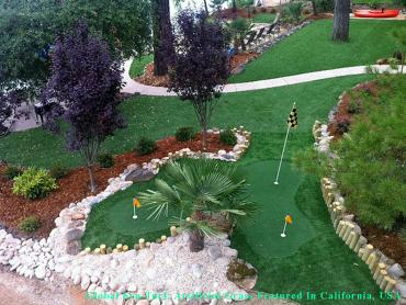 Fake Grass Carpet Fresno, California Landscape Photos, Backyard Design artificial grass