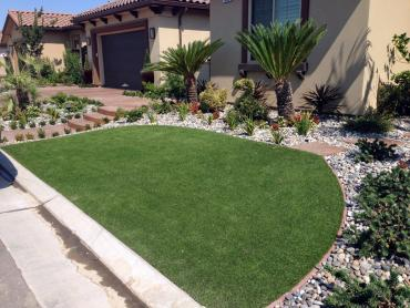 Artificial Grass Photos: Fake Grass Carpet King City, California Home And Garden, Front Yard Landscape Ideas
