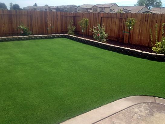 Artificial Grass Photos: Fake Lawn Auberry, California Lawn And Landscape, Backyard Landscape Ideas