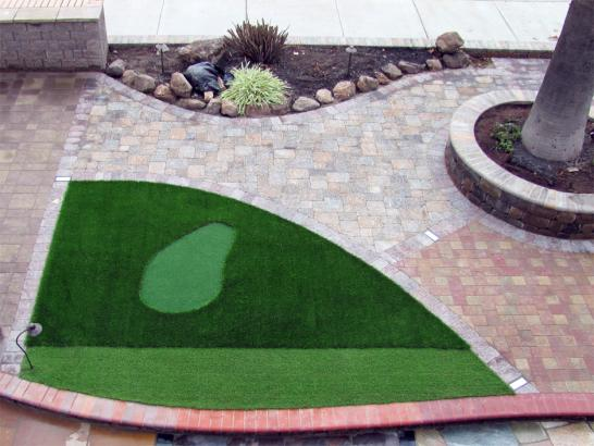 Artificial Grass Photos: Fake Lawn Goshen, California Home And Garden, Front Yard Design