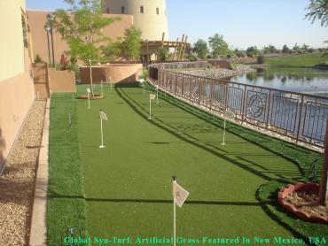 Fake Lawn Malaga, California Lawn And Garden, Backyard Makeover artificial grass