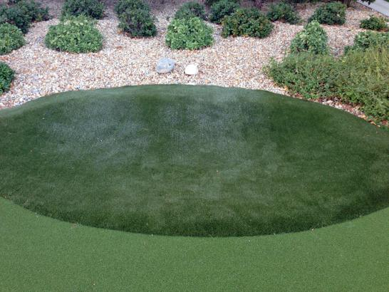 Artificial Grass Photos: Fake Lawn San Carlos, California Landscaping