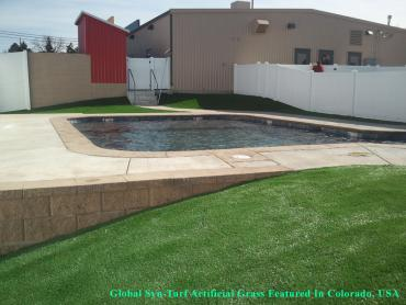 Fake Turf Kerman, California Landscaping, Natural Swimming Pools artificial grass