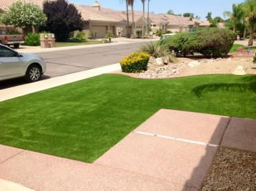 Artificial Grass Photos: Fake Turf San Ramon, California Landscape Design, Landscaping Ideas For Front Yard