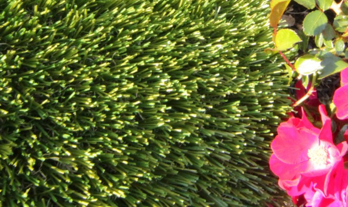 V Blade-77 fakegrass Artificial Grass Fresno California