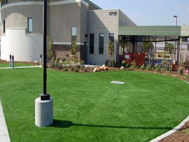 Artificial Grass Photos: Faux Grass Discovery Bay, California Roof Top, Commercial Landscape
