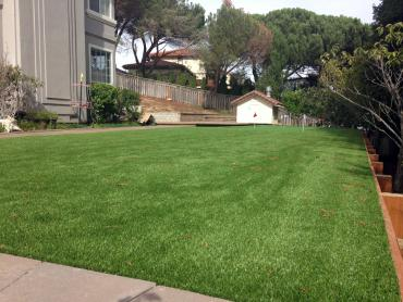 Artificial Grass Photos: Faux Grass Dublin, California Landscaping, Backyard Garden Ideas