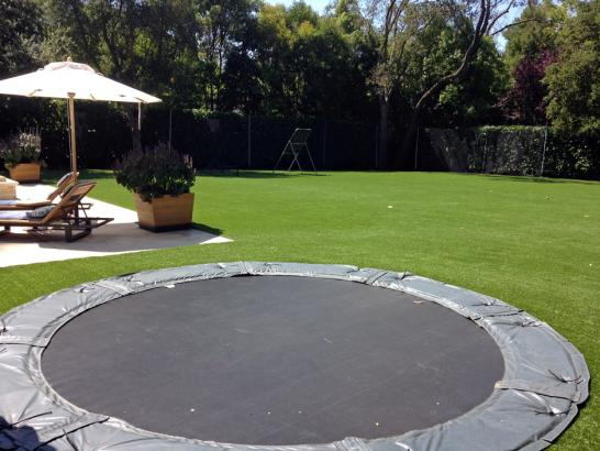 Artificial Grass Photos: Faux Grass Kingsburg, California Backyard Sports, Backyard Landscaping