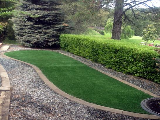 Artificial Grass Photos: Grass Carpet Coarsegold, California Landscape Ideas