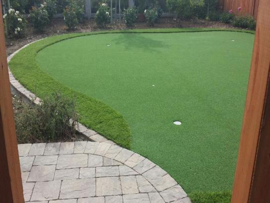 Artificial Grass Photos: Grass Carpet Hardwick, California Landscape Design, Backyard Landscape Ideas