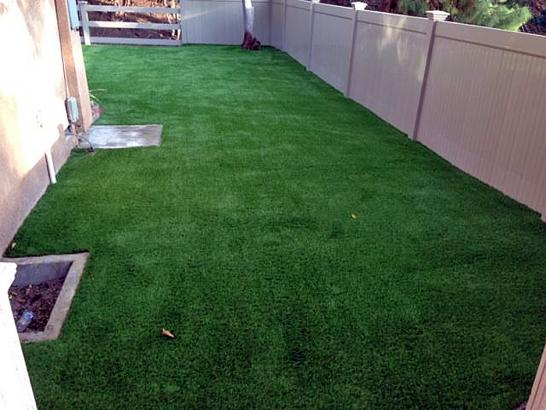 Artificial Grass Photos: Grass Carpet June Lake, California Cat Grass, Backyard Makeover