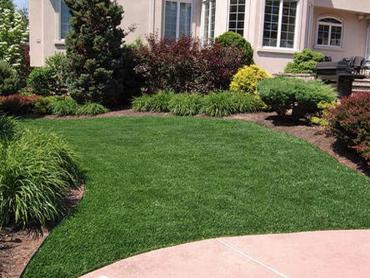 Artificial Grass Photos: Grass Installation Earlimart, California Landscaping Business, Front Yard Landscaping Ideas