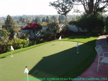 Artificial Grass Photos: Grass Installation Rolling Hills, California Rooftop, Backyard Garden Ideas