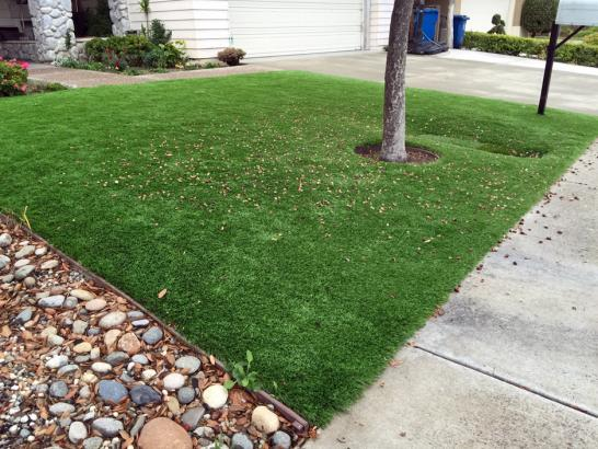Artificial Grass Photos: Grass Turf California Hot Springs, California Landscape Design, Landscaping Ideas For Front Yard