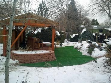 Artificial Grass Photos: Grass Turf Peters, California Rooftop, Backyard Design