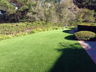 Artificial Grass Photos: Grass Turf Westley, California City Landscape, Front Yard Design