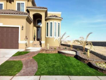 Artificial Grass Photos: Grass Turf Yettem, California Lawns, Front Yard Landscaping