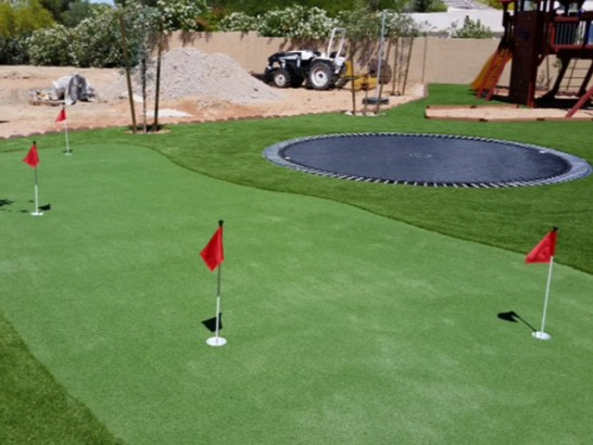 Artificial Grass Photos: Green Lawn Pismo Beach, California Indoor Putting Green, Backyard Ideas