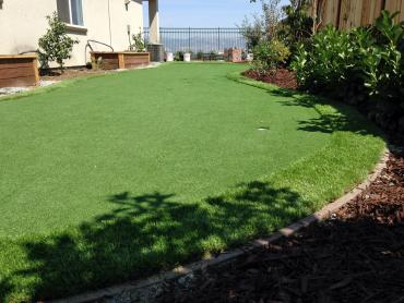 Artificial Grass Photos: Installing Artificial Grass Aspen Springs, California Landscaping Business, Backyard Landscape Ideas