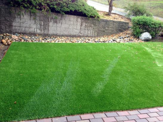 Artificial Grass Photos: Installing Artificial Grass Del Rey, California Grass For Dogs, Backyard Landscaping Ideas