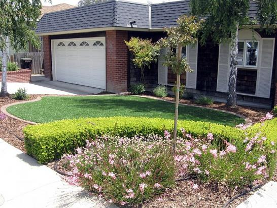 Artificial Grass Photos: Lawn Services Escalon, California Lawn And Garden, Front Yard Landscaping Ideas