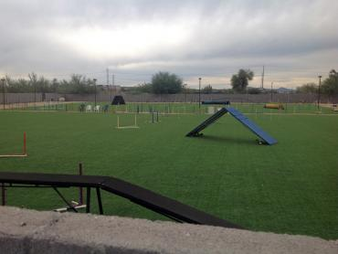 Artificial Grass Photos: Lawn Services Los Berros, California Backyard Sports, Parks